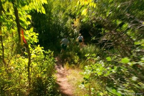 Runners near the Lambs Canyon aid station. Wasatch 100 Endurance Run.
