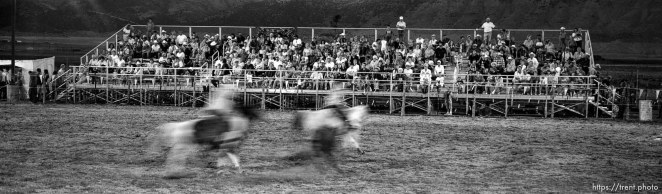 fans in stands. Round Valley Rodeo.