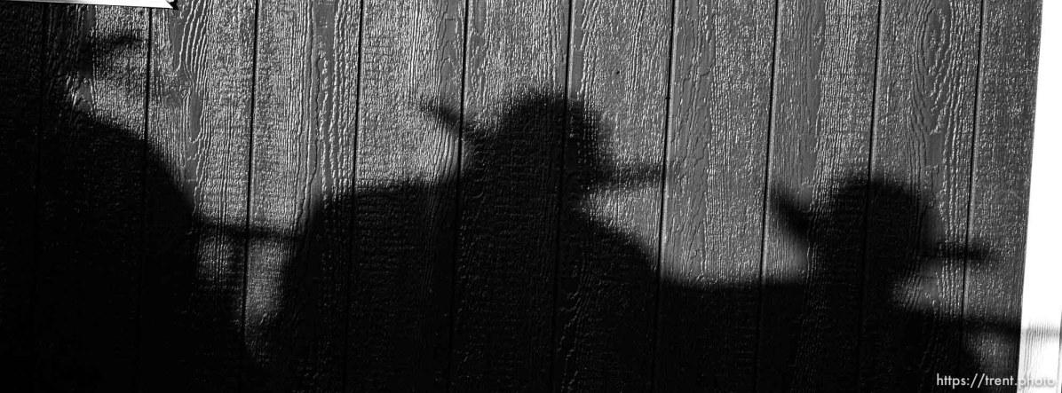 Cowboy shadows. Round Valley Rodeo.