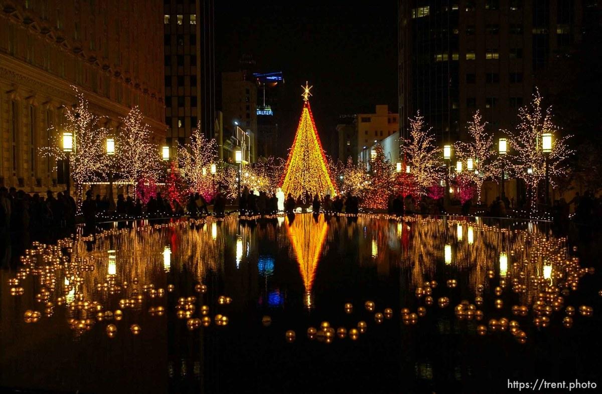 Christmas Lights – trent.photo