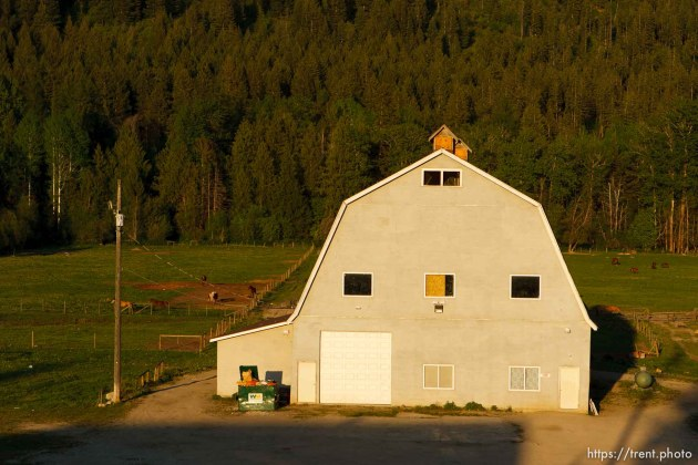 Polygamist Winston Blackmore in Bountiful, British Columbia. the old barn