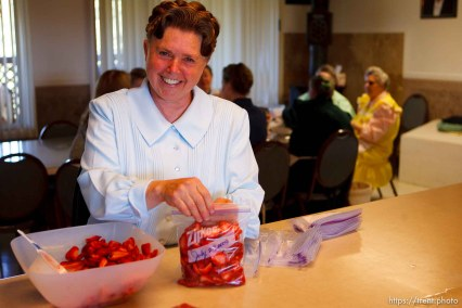 Westcliffe - FLDS women packing strawberries. Monday, July 28, 2008.