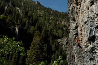 Trent Nelson   The Salt Lake Tribune Mindy Shulak climbs the Division Wall, Wednesday June 19, 2013 in American Fork Canyon.