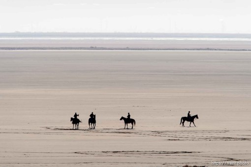 Trent Nelson | The Salt Lake Tribune Horse riders on the shores of the Great Salt Lake, during the annual bison roundup at Antelope Island State Park, Friday October 24, 2014.