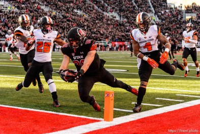 Trent Nelson | The Salt Lake Tribune Utah Utes tight end Harrison Handley (88) dives into the end zone for a first quarter touchdown as the University of Utah hosts Oregon State, NCAA football at Rice-Eccles Stadium in Salt Lake City, Saturday October 31, 2015.