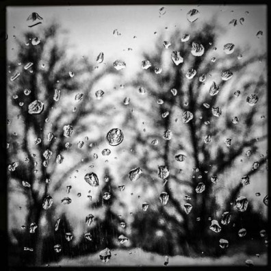 rain drops on window and trees, Monday January 9, 2017.