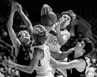 Trent Nelson | The Salt Lake Tribune Bingham's Brayden Cosper (14) pulls down a rebound as Bingham faces Lone Peak in the 5A state high school basketball championship game, Saturday March 4, 2017.