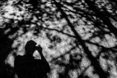 trent, tree shadow, Saturday July 22, 2017.