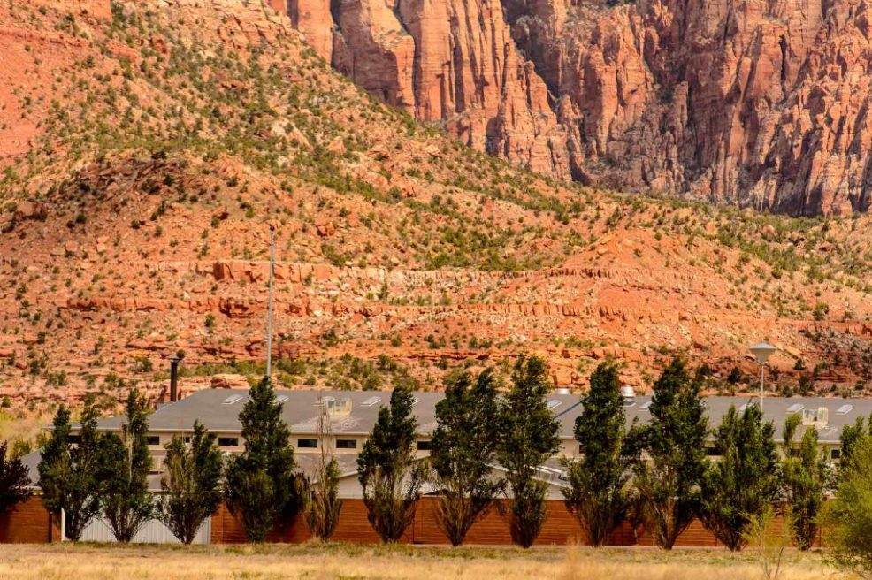 trees and wall, leroy s johnson meeting house, flds, Friday April 15, 2016.