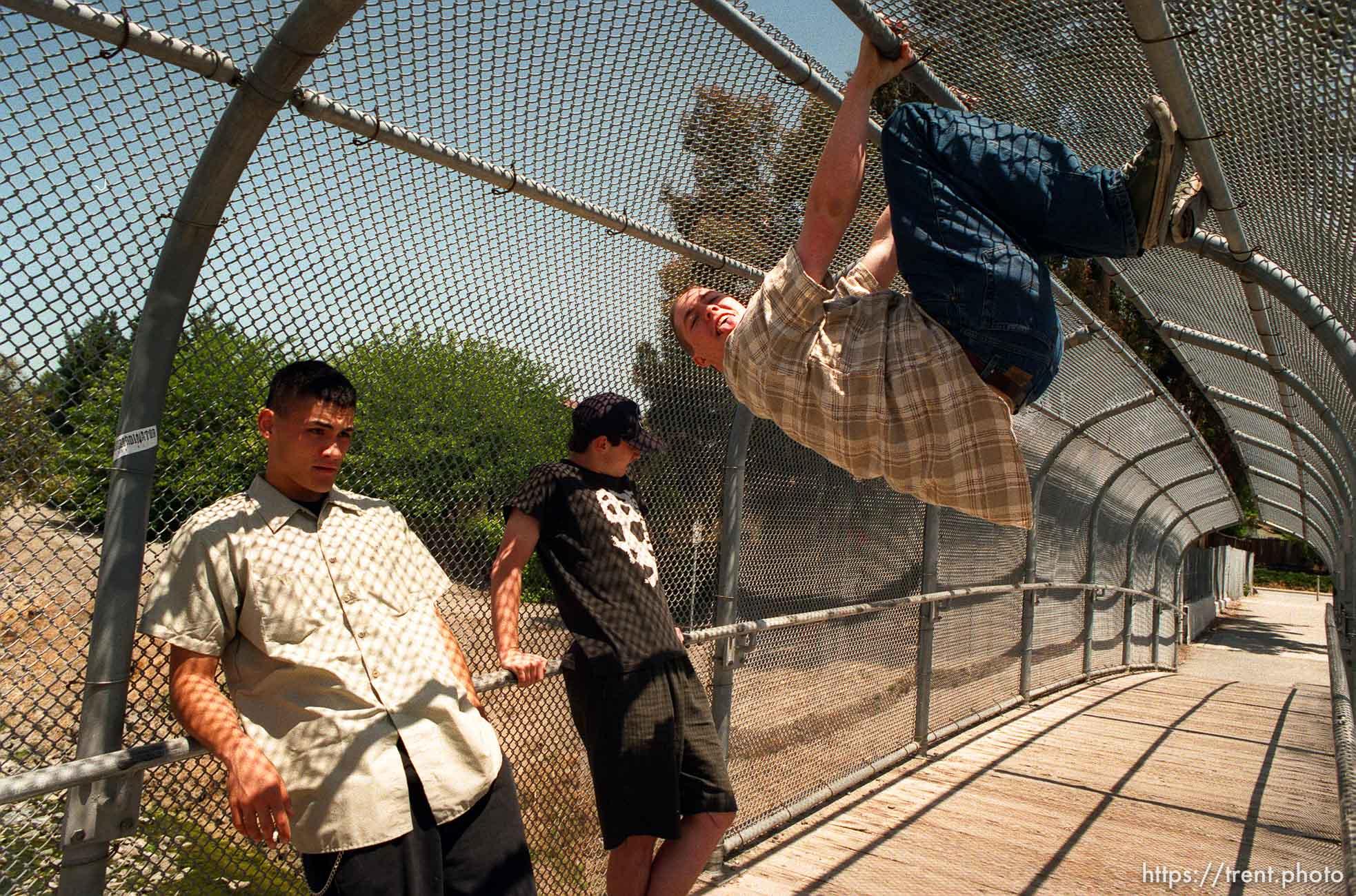 Colby Buzzell, Peter Hansen on the bridge. Insubordinator staff shot
