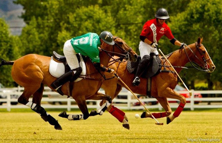 Pharmacy Cup Champagne Brunch & Polo Match