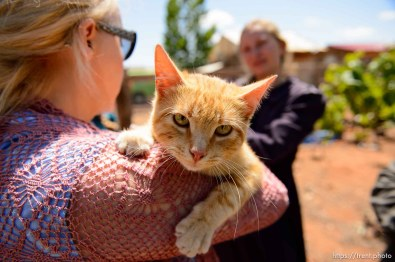Trent Nelson | The Salt Lake Tribune cat that is being adopted out at 17-year-old flds girl is moving to location where pets not allowed, Monday May 8, 2017. christine marie katas