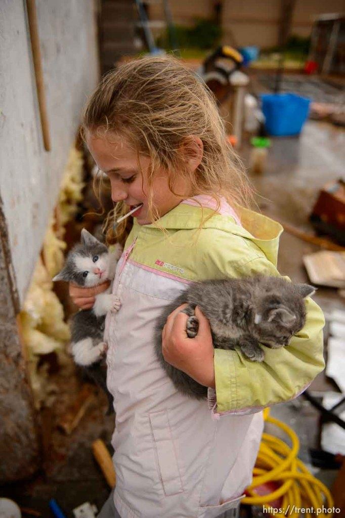 Trent Nelson | The Salt Lake Tribune flds girl with with kittens, Tuesday May 9, 2017. cat