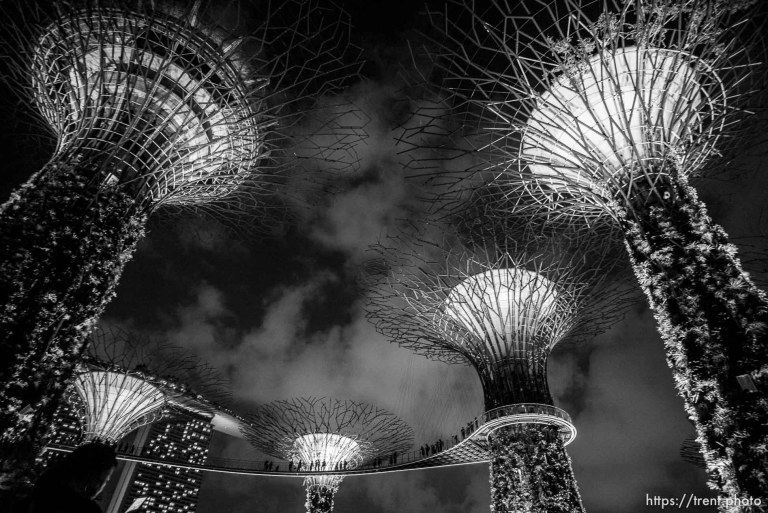 Gardens at the Bay light show