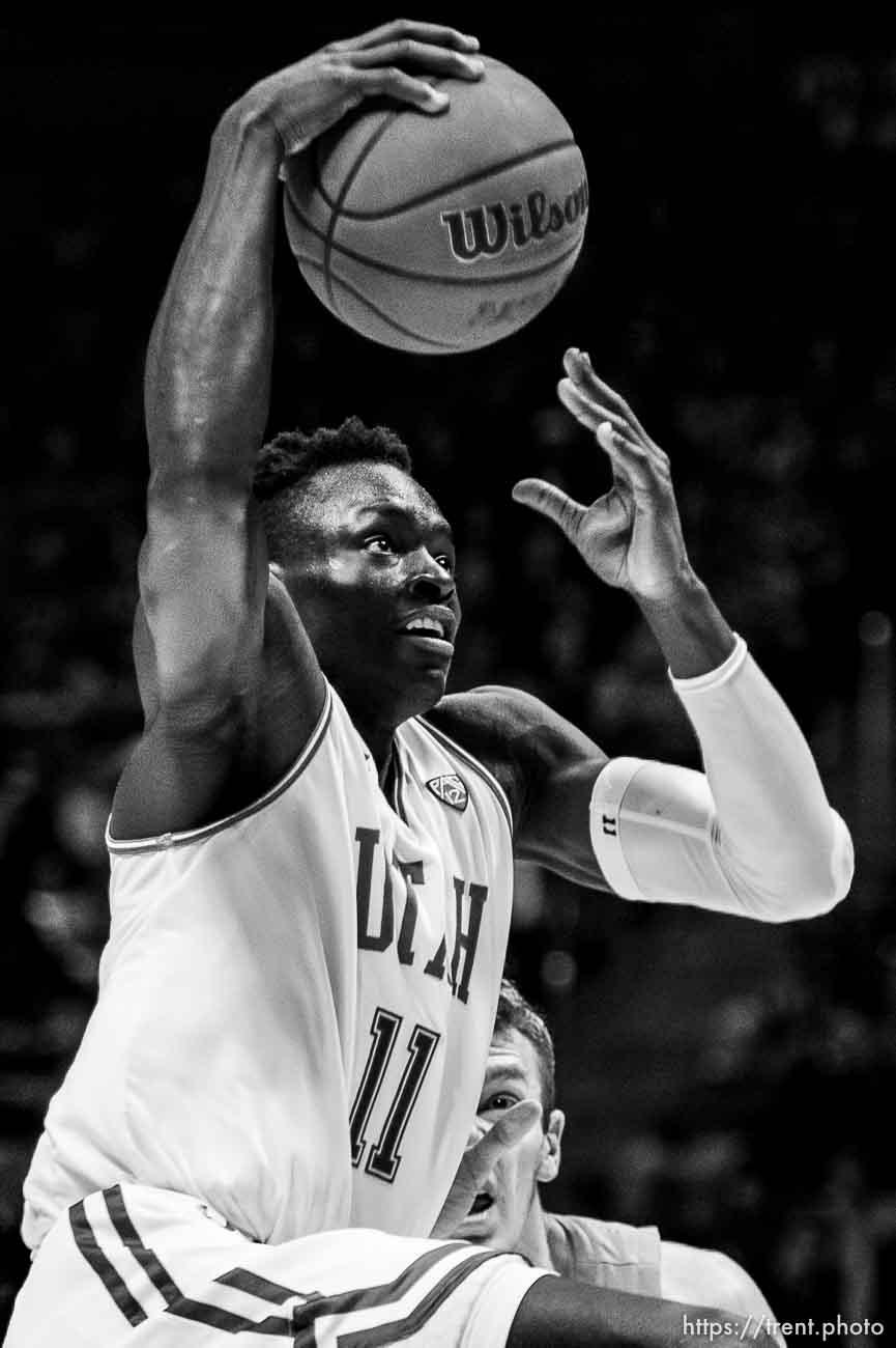 (Trent Nelson | The Salt Lake Tribune) Utah Utes guard Both Gach (11) as the University of Utah hosts Oregon State, NCAA men's basketball in Salt Lake City on Thursday, Jan. 2, 2020.