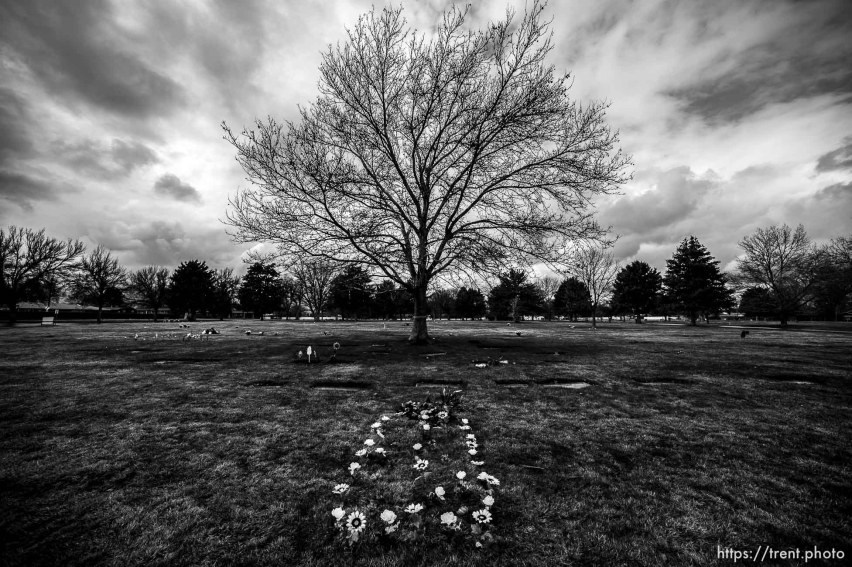 (Trent Nelson | The Salt Lake Tribune) Elysian Burial Gardens in Salt Lake City on Thursday, March 19, 2020.