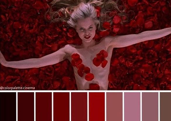 Color Palette Cinema American Beauty