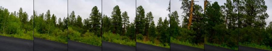 driving over boulder mountain, utah