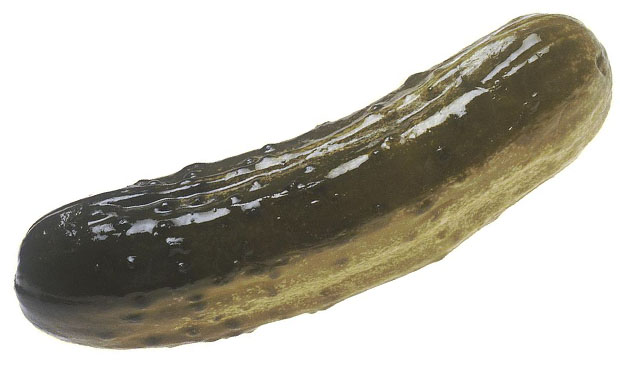 pickle-@
