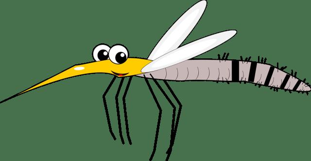 insectDHU