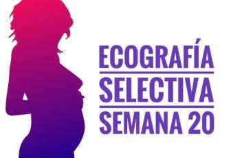 ecografia selectiva . semana 20