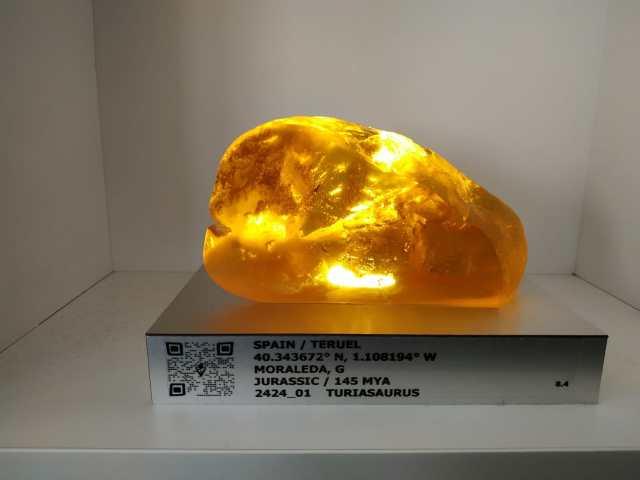 IMG 20190203 WA0007 - Visita a Jurassic World Exhibition en Madrid