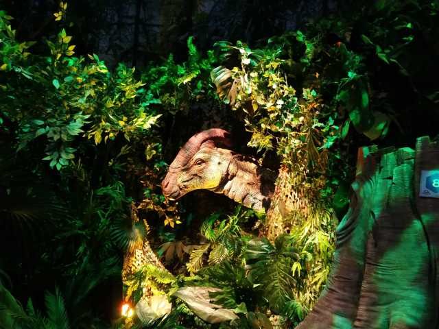IMG 20190203 WA0045 1 - Visita a Jurassic World Exhibition en Madrid