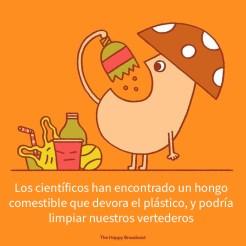 buenasnoticias-16-5dee5eaad1083__700