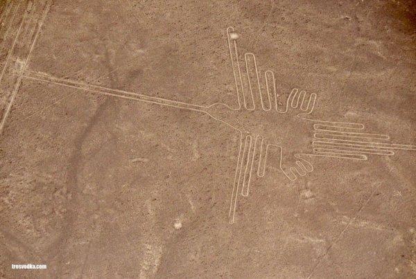 Linie Nazca - tresvodka