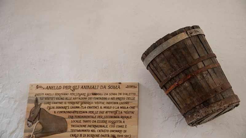 Alla scoperta del Borgo di Gaeta: il piccolo museo del vino