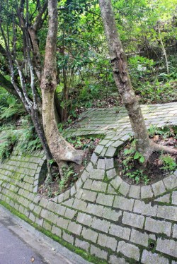 Slope protection at Peak Circle Walk, Hong Kong