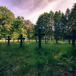 Cemetery Of The Insane - Belgium