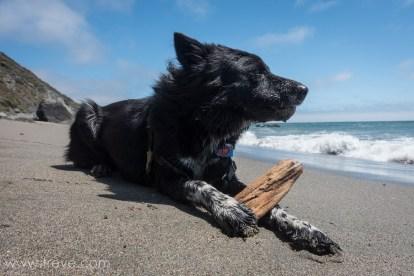 Carson on the Beach