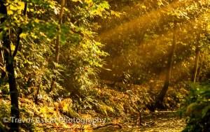 Love the Autumn – Do Photography!
