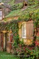 moss and ivy-covered cottage in autumn Trevor Aston Photography