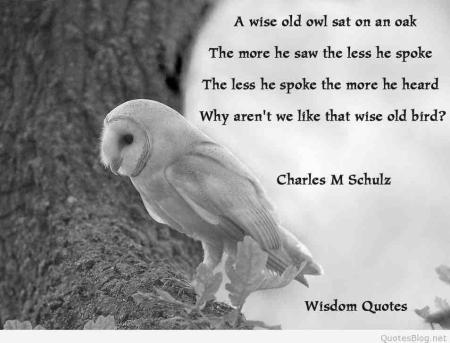 Wise old bird