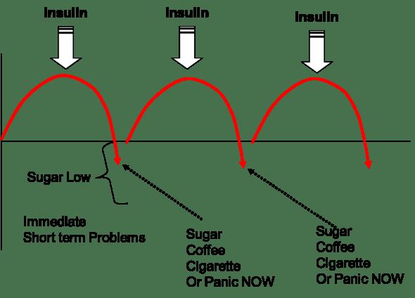 Trevor Gunn Homeopath Fig 3 Blood Sugar Highs and Lows