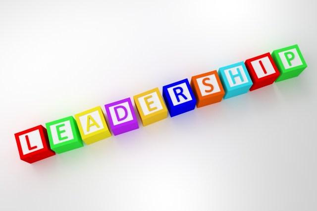 Leadership blocks
