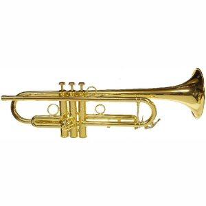 CarolBrass4050H Intermediate Trumpet Square