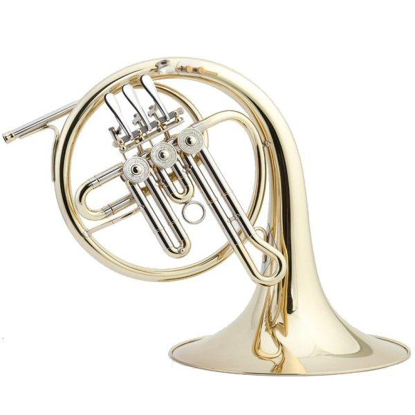 Lidl 310 Descant Horn