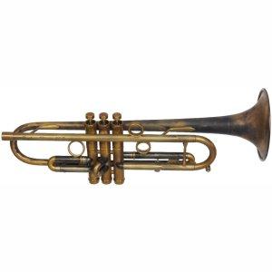 Taylor Chicago Jazz Trumet Patina Finish