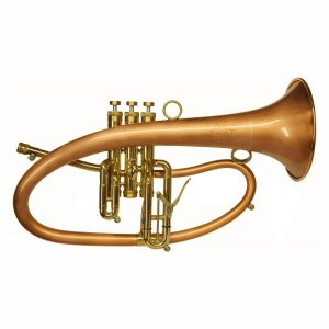 Taylor Phat Boy Flugel Horn
