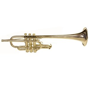 Second Hand Rosehill D Trumpet