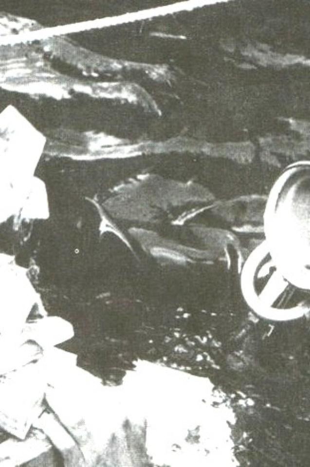 Мистерията падна! Разкриха защо никой не може да открие несметните съкровища на нацистите