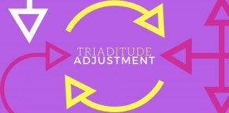 triatitude-adjustment-family-land