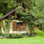 Editorial: Politicizing tiny houses