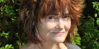 kelly-cherry-press-53-author