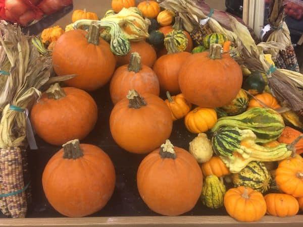 pumpkins halloween raleigh durham chapel hill
