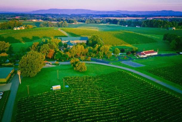 Free Guide Maps Available for the New Surry County Wine