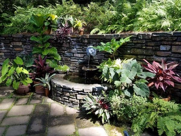duke gardens summer durham nc